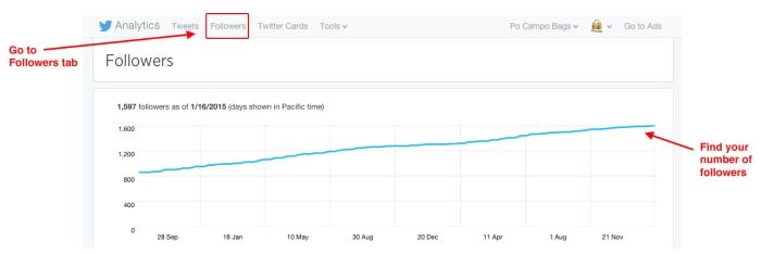 Measuring-Social-Media-Twitter-Followers